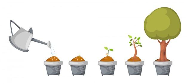 Gieter met boom levenscyclus vector