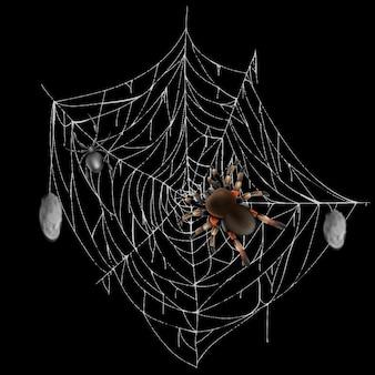Giftige spinnen op web kant met gejaagd en gewikkeld prooien 3d-realistische vector geïsoleerd op zwarte ba