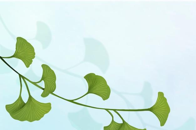 Ginkgo bladachtergrond