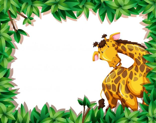 Giraffe in de natuur scène