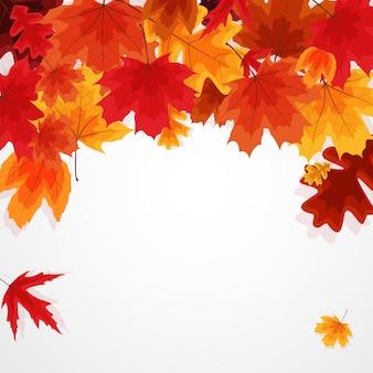 Glanzende herfstbladeren. illustratie