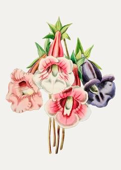 Gloxinia bloem variëteit