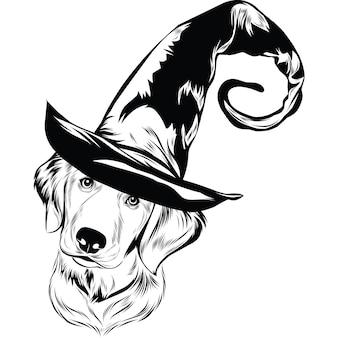 Golden retriever-hond met heksenhoed voor halloween