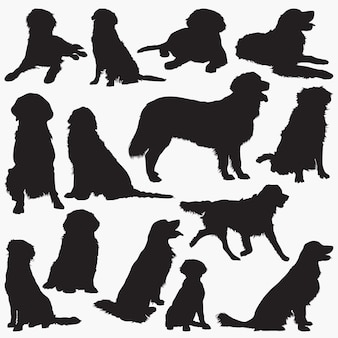 Golden retriever silhouetten