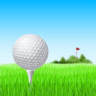 Golfbal op het gras