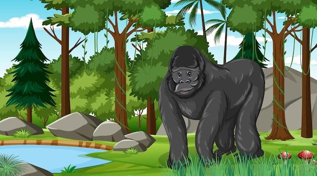 Gorilla in bos- of regenwoudscène met veel bomen Gratis Vector