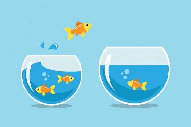 Gouden vissen springen