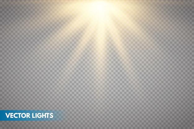 Gouden zonneschijn met stralen en stralen. vector warm lichteffect