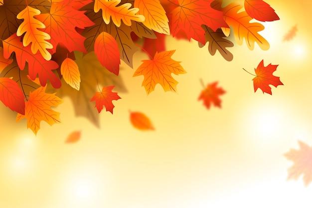 Gradiënt herfstbladeren achtergrond Gratis Vector
