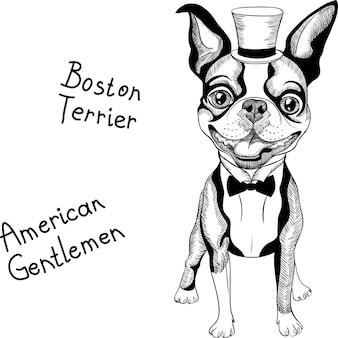 Grappige cartoon hipster boston terrier-ras glimlachen