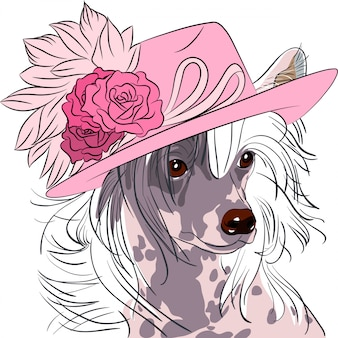 Grappige cartoon hipster hond chinese crested ras