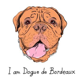 Grappige cartoon hipster hond franse mastiff