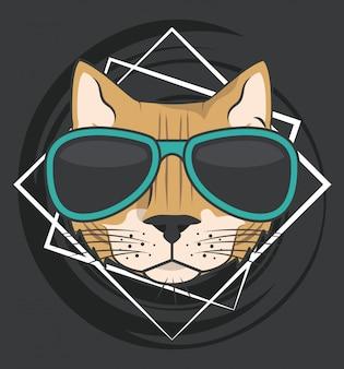 Grappige kat met zonnebril coole stijl