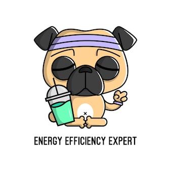 Grappige pug hond is mediteerd en drinkt een fles sap hoge kwaliteit cartoonmascotte