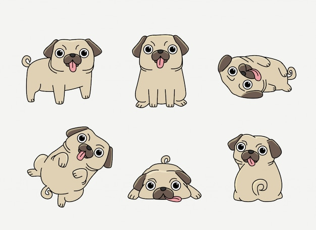 Grappige pug in verschillende pose set