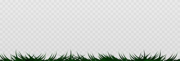 Gras, gazon, veld. de illustratie is getekend op een witte achtergrond.