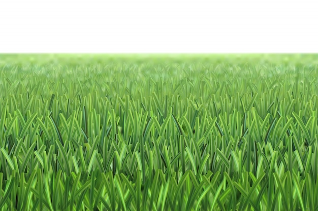 Gras voetbalveld achtergrond