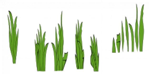 Grassprieten en bosjes