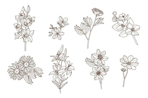 Gravure hand getrokken bloemencollectie