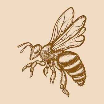 Gravure illustratie van honingbij