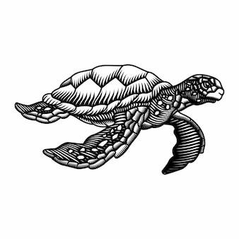 Gravure stijl hand getrokken zeeschildpad illustratie