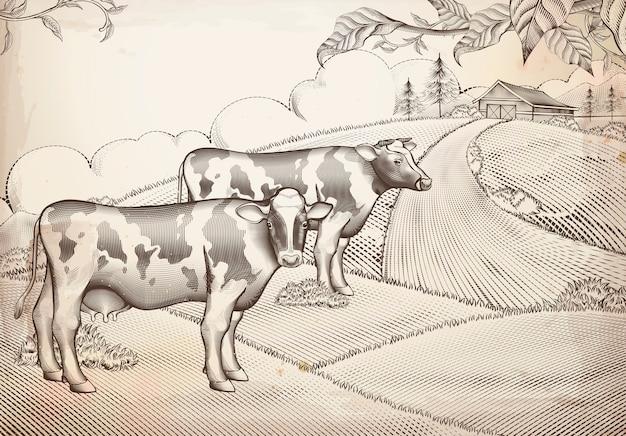 Gravure stijl melkvee en landbouwgrond achtergrond