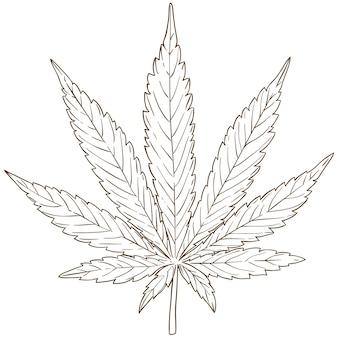 Gravure tekening illustratie van cannabis blad