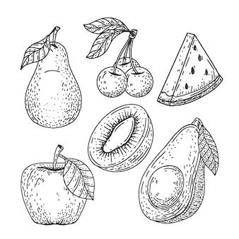 Gravure van handgetekende fruitcollectie