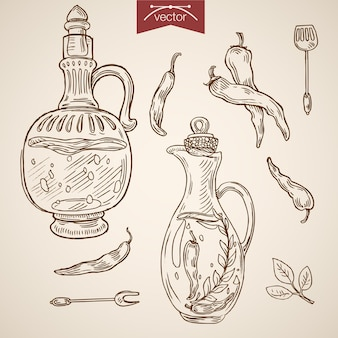 Gravure van vintage hand getrokken olijfolie, souse, kruidencollectie.
