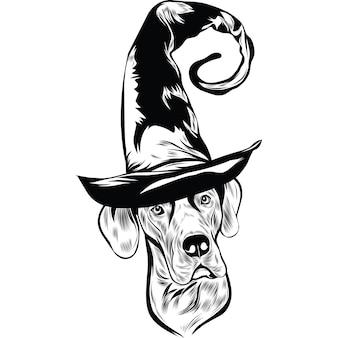 Great dane-hond met heksenhoed voor halloween