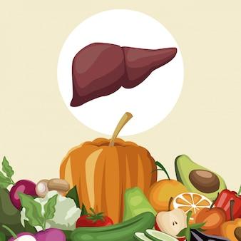Grens groenten en fruit gezonde voeding aan het leverorgaan