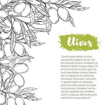 Grens met kleurrijke olijven. het patroon met ruimte voor tekst. voor flyer, boekje voor reclame en.