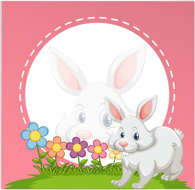 Grens sjabloon met schattige konijntje