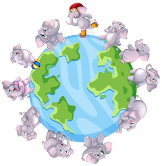 Grijze olifanten over de hele wereld