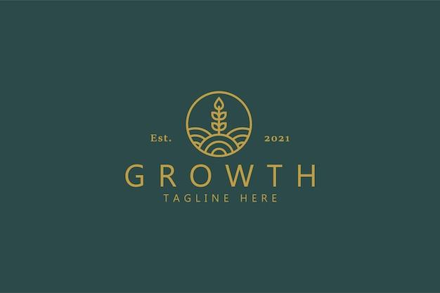 Groei tarwe logo. nature plant productsymbool voor bedrijf. Premium Vector