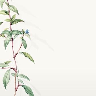 Groen botanisch bladerenontwerp als achtergrond