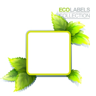 Groen eco-label