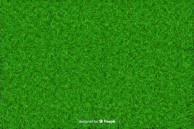 Groen gras achtergrond realisitic ontwerp