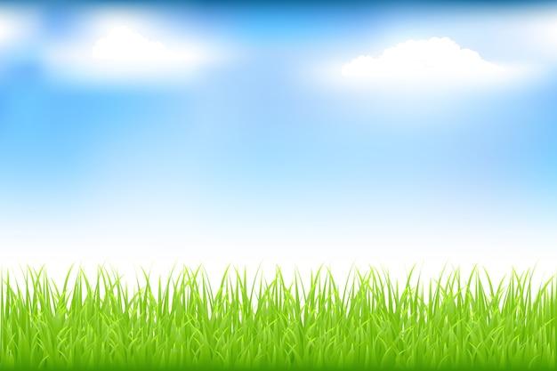 Groen gras en blauwe hemel met wolken