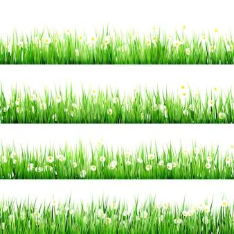 Groen gras en kamille in de natuur.