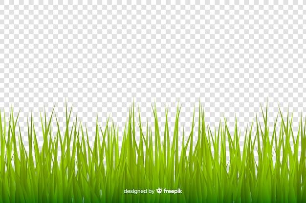 Groen gras grens realistische ontwerp