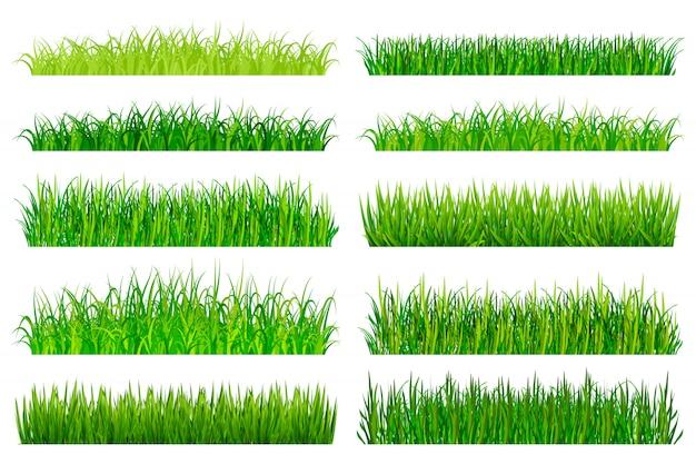 Groen gras grenzen ingesteld
