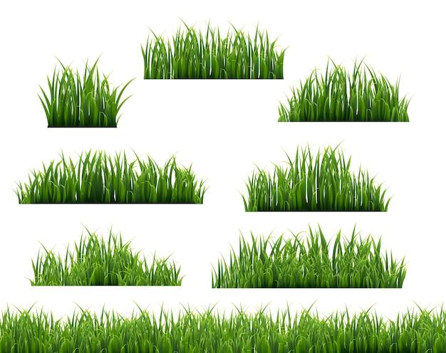 Groen gras illustratie