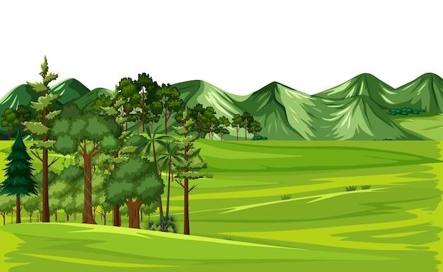 Groen natuur buitenlandschap
