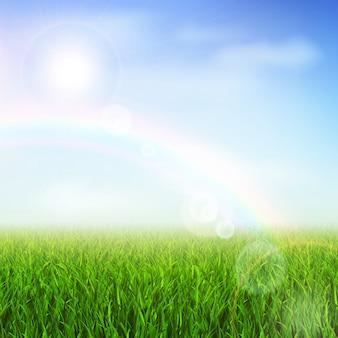 Groen veld