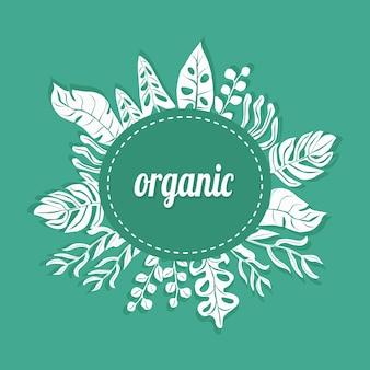 Groen wit frame voor elke organische presentatie vectorillustratie