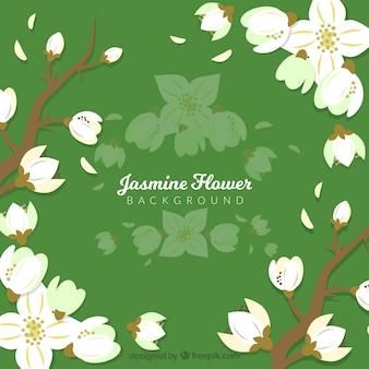 Groene achtergrond met jasmijn