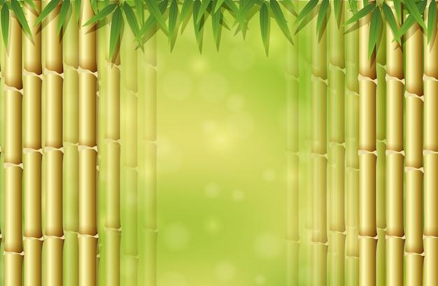 Groene bamboe in aardmalplaatje