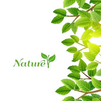 Groene bladeren aard achtergrond afdrukken