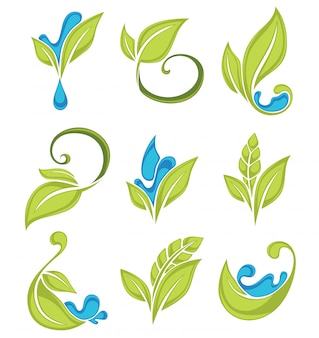 Groene bladeren planten en waterdruppels verse collectie